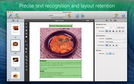 Precise text recognition and layout retention